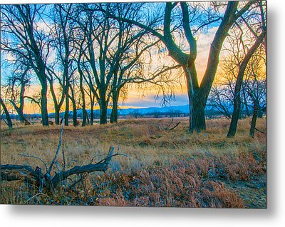 Setting Sun At Rocky Mountain Arsenal_1 Metal Print