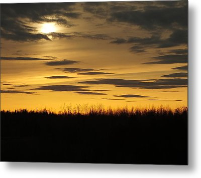 Metal Print featuring the photograph Setting Sun by Gene Cyr