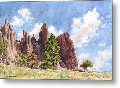 Settler's Park Metal Print by Anne Gifford