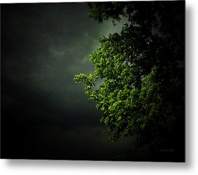 Metal Print featuring the photograph Severe Weather by Cynthia Lassiter
