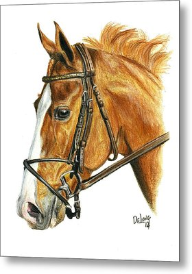 Shackleford Metal Print