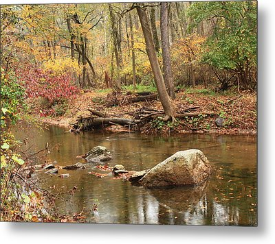 Shades Of Fall In Ridley Park Metal Print by Patrice Zinck