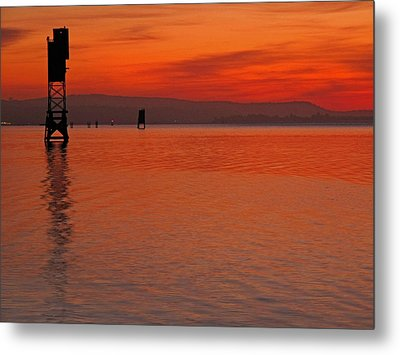 Metal Print featuring the photograph Shades Of Orange by Suzy Piatt