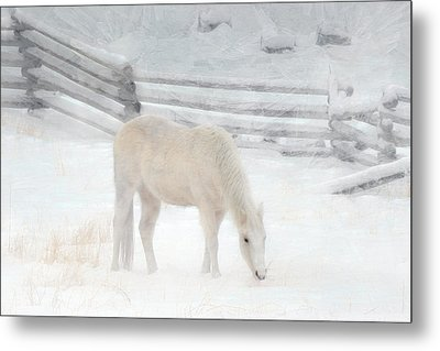 Shades Of Pale Metal Print