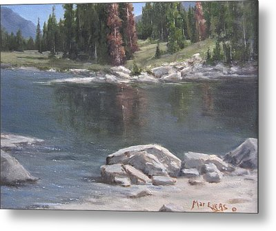Shadow Lake  Metal Print by Mar Evers