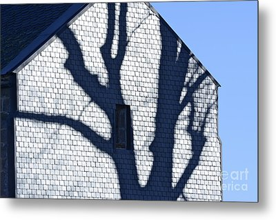 Shadow Tree Metal Print by Bernard Jaubert