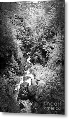Metal Print featuring the photograph Shadowed Stream by Paul Cammarata