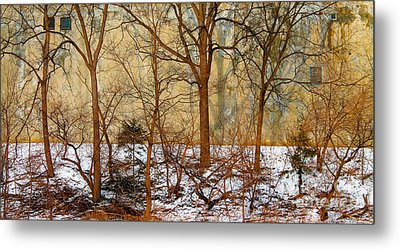 Metal Print featuring the photograph Shadows In The Urban Jungle by Nina Silver