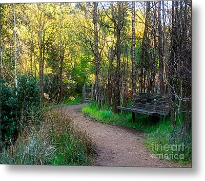 Metal Print featuring the photograph Shady Dell by Kate Brown