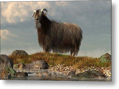 Shaggy Goat Metal Print by Daniel Eskridge