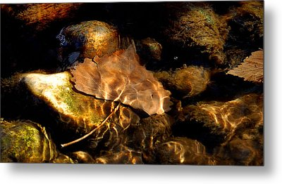 Shallow Beauty Metal Print