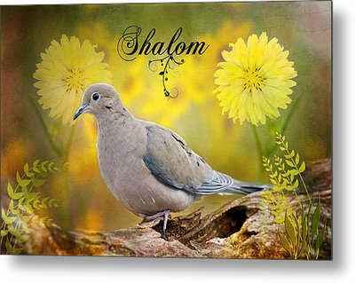 Shalom Metal Print by Bonnie Barry