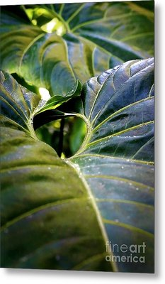 Metal Print featuring the photograph Shapes Of Hawaii 11 by Ellen Cotton