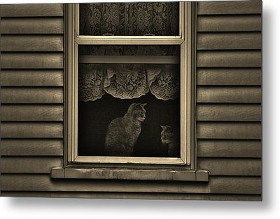 Shared Silence Metal Print by Robert Geary