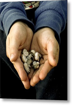 Sharing Hands Metal Print by Paulette Maffucci