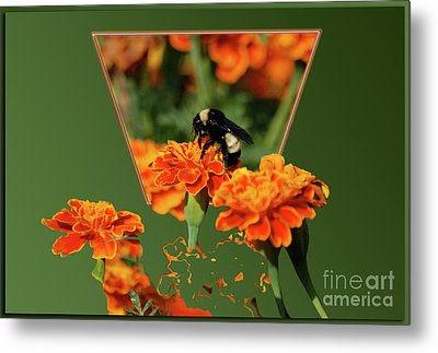 Metal Print featuring the photograph Sharing The Nectar Of Life by Thomas Woolworth