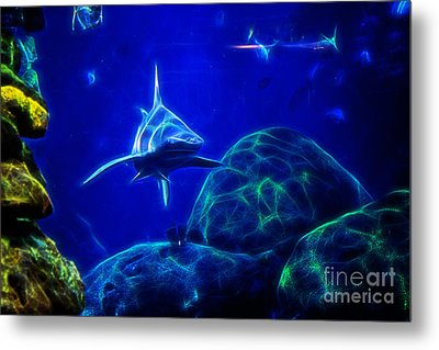 Shark Hunting Abstract Metal Print