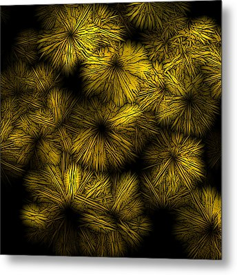 Shattered Daisy 5 Metal Print by Patricia Keith