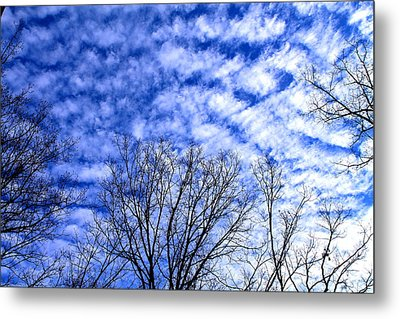 Metal Print featuring the photograph Shattered Skies by Candice Trimble