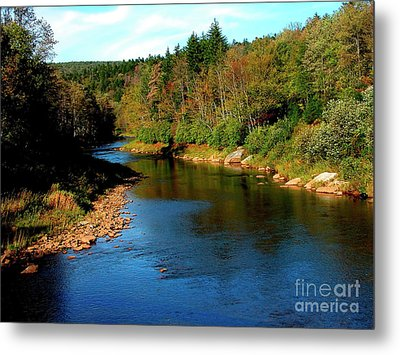 Shavers Fork Of Cheat River Metal Print by Thomas R Fletcher