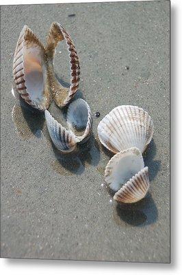 She Sells Sea Shells Metal Print