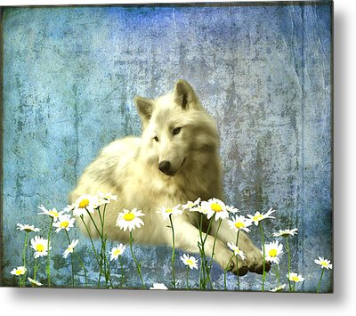 She Wolf Metal Print by Sharon Lisa Clarke