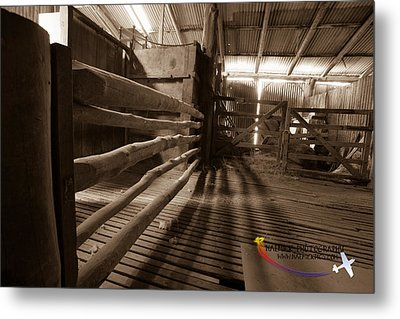 Shearing Shed Metal Print by Michael Wignall