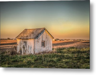 Shed Some Light Metal Print