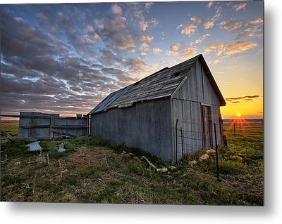 Shedded Rising Metal Print by Thomas Zimmerman
