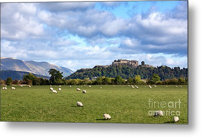 Sheep And Stirling Castle Metal Print by Jane Rix