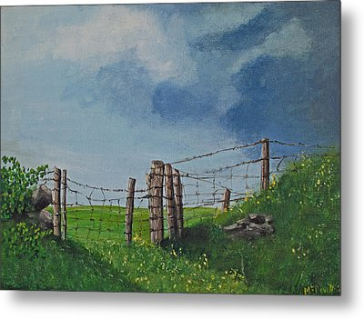 Sheep Field Metal Print by Barbara McDevitt