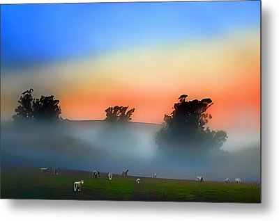 Sheep In The Early Morning Fog Metal Print by Wernher Krutein