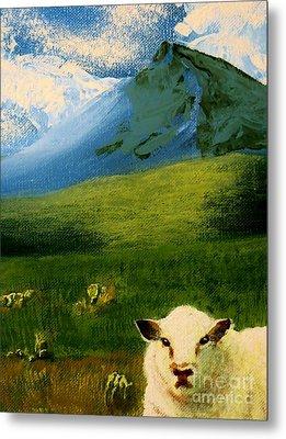 Sheep Looking In Metal Print