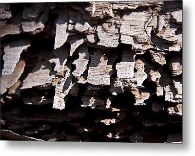 Sheets Of Bark Metal Print
