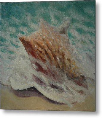 Shell Two - 2 In A Series Of 3 Metal Print by Don Young