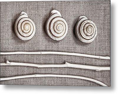 Shells And Sticks Metal Print by Carol Leigh