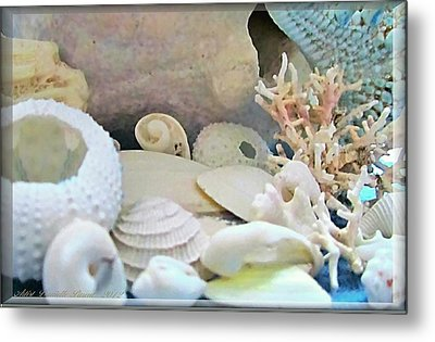 Shells In Pastels Metal Print by Danielle  Parent
