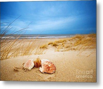 Shells On Sand Metal Print by Michal Bednarek