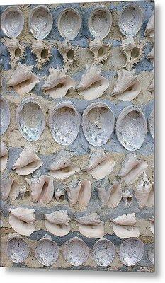Shells Metal Print by Randy Pollard