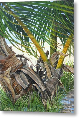 Sheltering Palms Metal Print by Bob  George