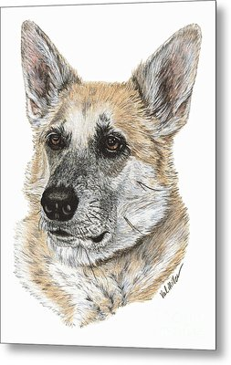 Shepherd Beauty Metal Print