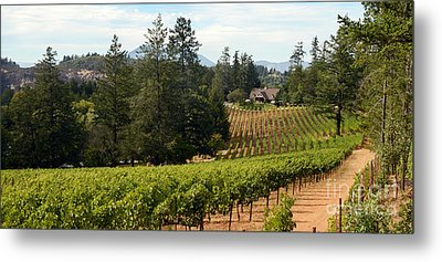 Sherwin Family Vineyards Metal Print