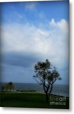 Metal Print featuring the photograph Sherwood Island by Kristine Nora