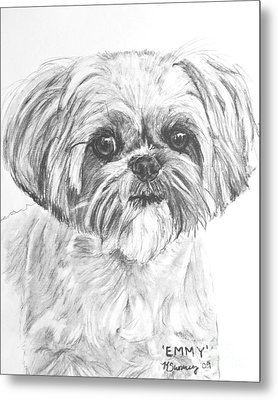 Shih Tzu Portrait In Charcoal Metal Print