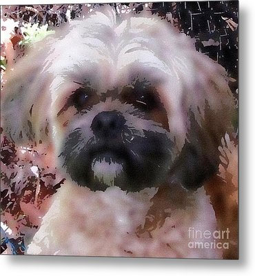 Shih Tzu Watercolor Metal Print