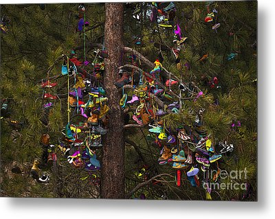 Metal Print featuring the photograph Shoe Shrine by Sandi Mikuse