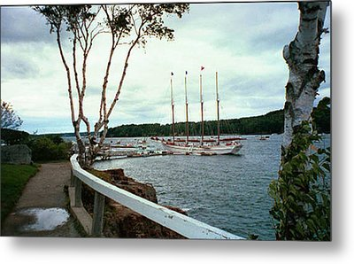Shore Path In Bar Harbor Maine Metal Print