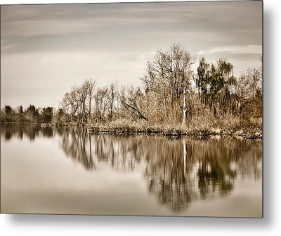 Metal Print featuring the photograph Shoreline 1 by Greg Jackson