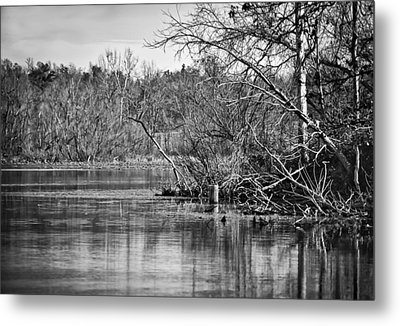 Metal Print featuring the photograph Shoreline 4 by Greg Jackson