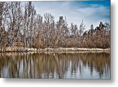 Metal Print featuring the photograph Shoreline 5a by Greg Jackson